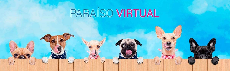 paraiso-virtual
