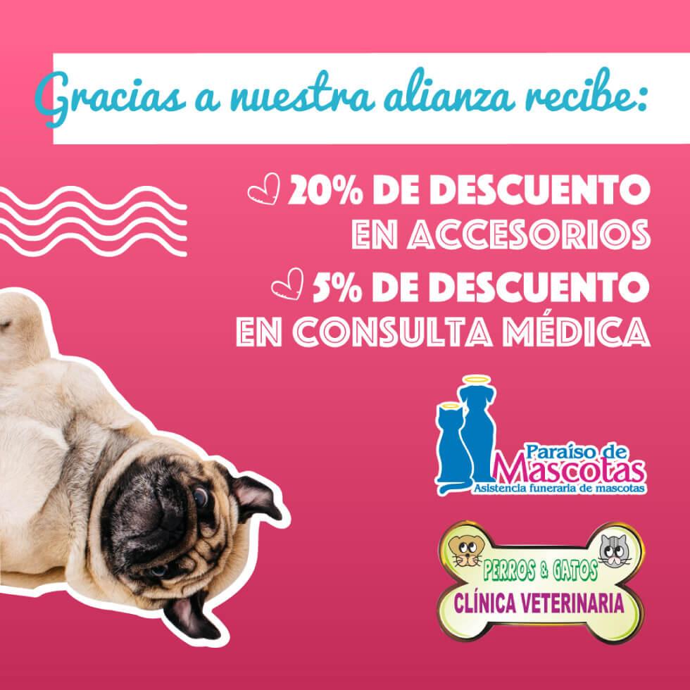 Alianza Paraiso de mascotas y Veterinaria Perros y Gatos