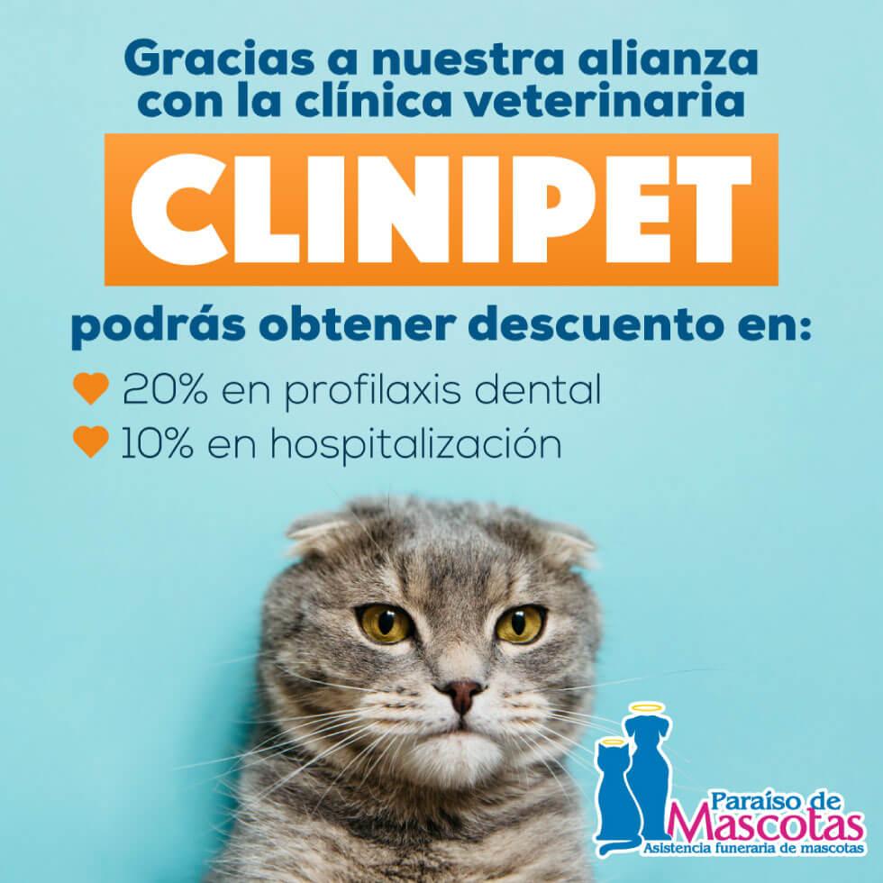 Alianza Paraiso de mascotas y Clinipet