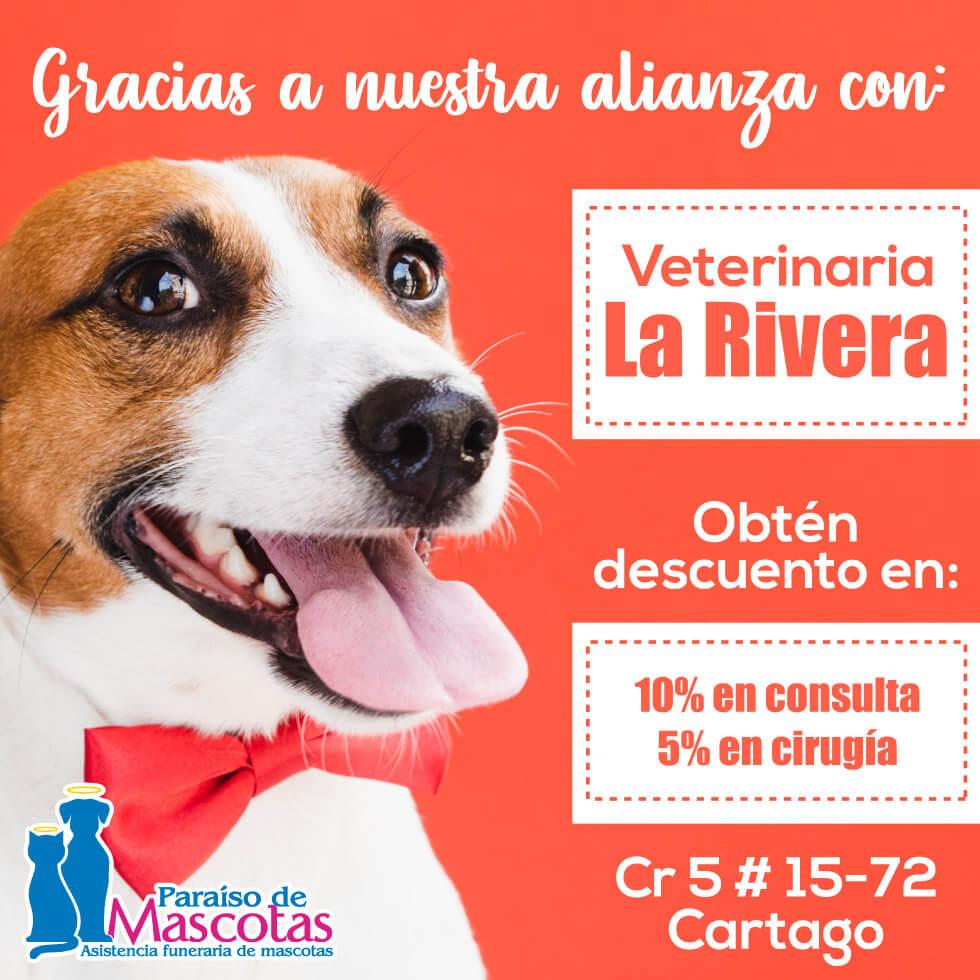 Alianza Paraiso de mascotas y Veterinaria La Rivera