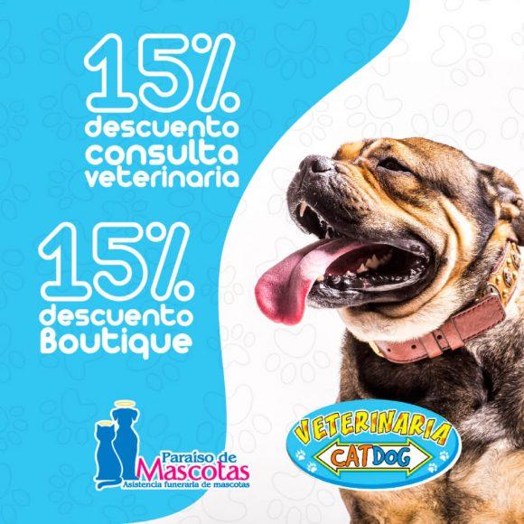 Alianza-Paraiso-Veterinaria catdog