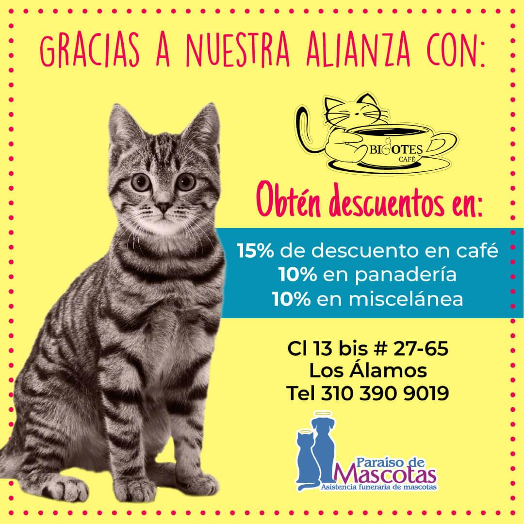 Alianza Paraíso de Mascotas y Bigotes Café